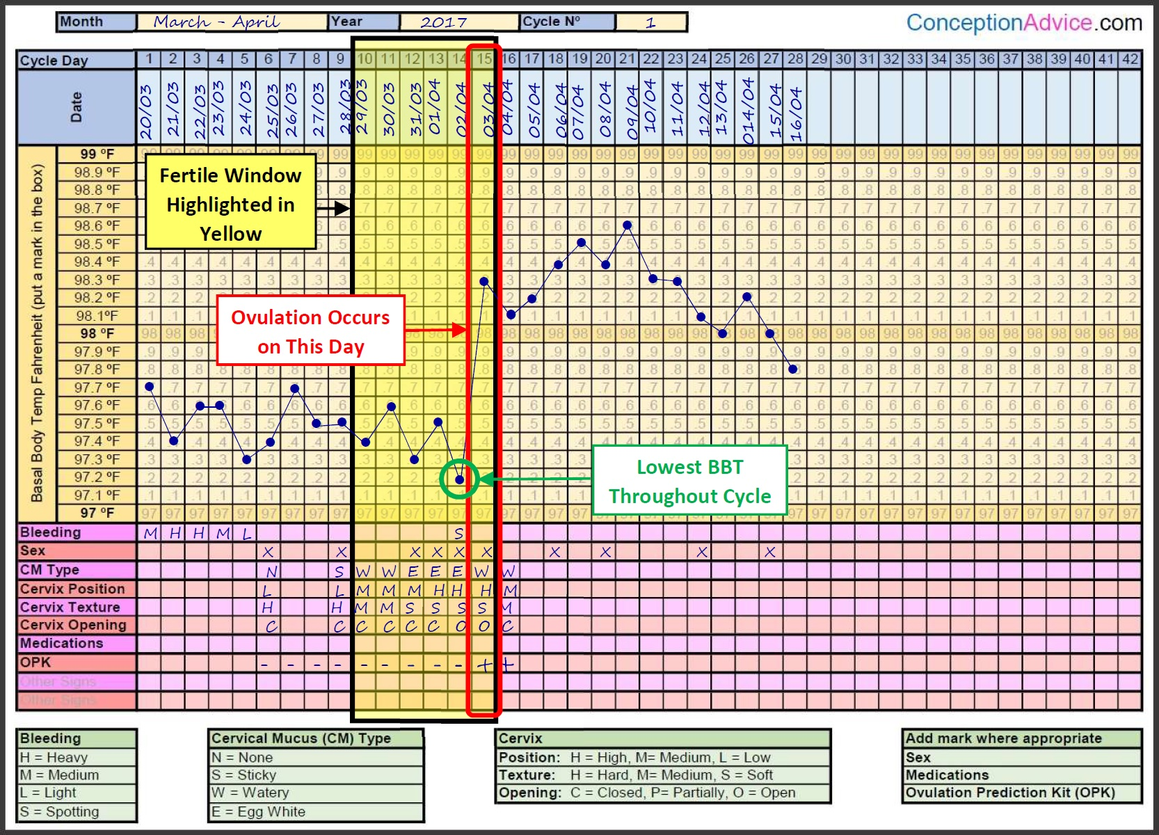 image relating to Ovulation Chart Printable named Fertility Charting Fertile Window Calculator Conception